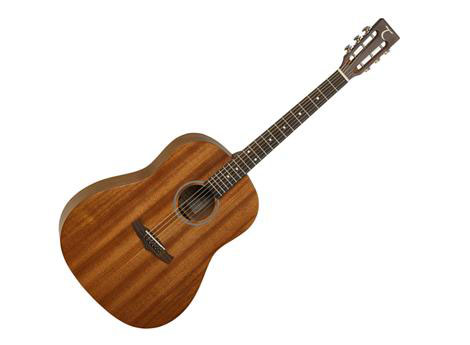 Tanglewood TW138 ASM SD
